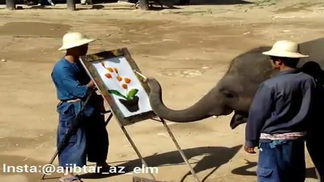 نقاشی کشیدن فوق العاده فیل!!!