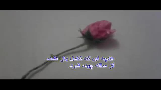 چگونه گل رز را خشک کنیم