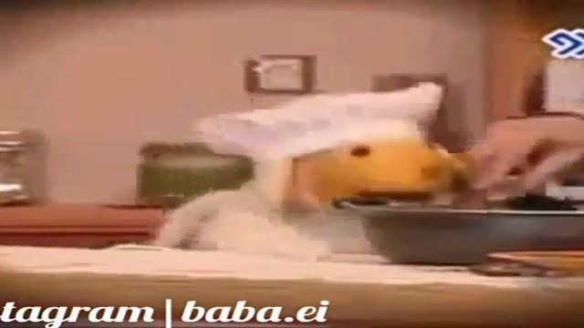 آموزش آشپزی توسط ببعی