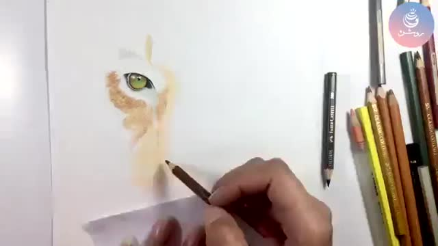 آموزش نقاشی مداد رنگی حیوانات - دوره مداد رنگی 1