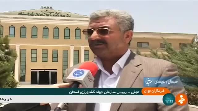 Iran Camel farming, Zahedan county پرورش شتر شهرستان زاهدان ایران