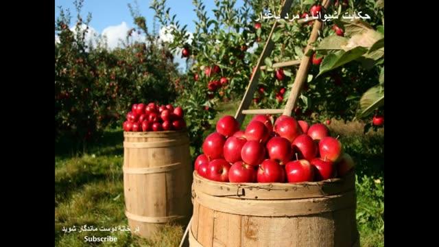 حکایت مرد باغدار و شیوانا: اقدام های کوچک تفاوتهای بزرگ می آفرینند