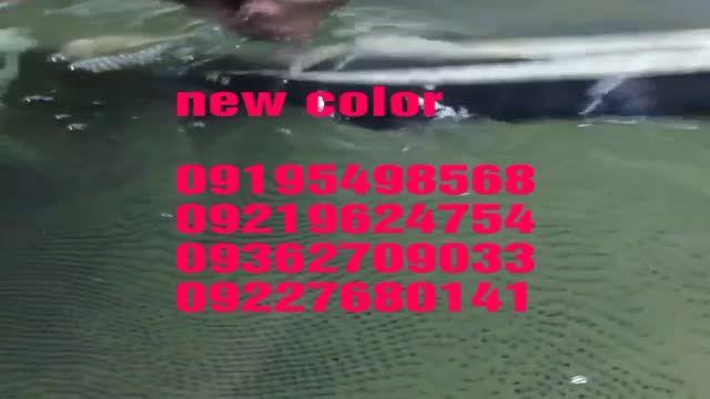 فروش حوضچه(وان)واترترانسفر نیوکالر09195498568