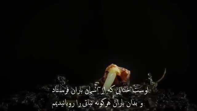 بهترین و زیباترین تلاوت قران کریم الشان با ترجمه فارسی و تصاویر مربوط به آیات الهی و ویدیو بی نظیر