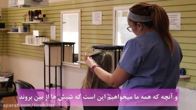 رشک یا تخم شپش را چگونه درمان کنیم