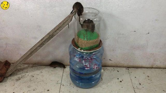 ساخت تله موش با بادکنک