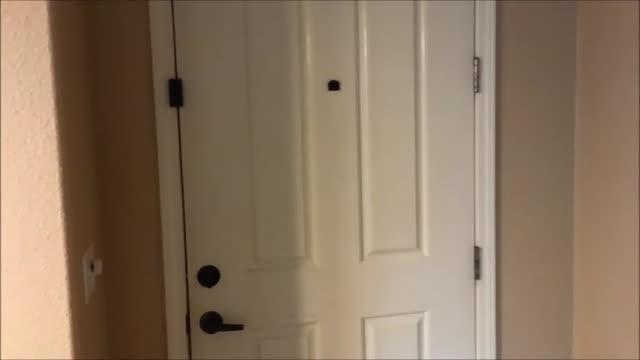 درب ضد سرقت راشا