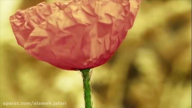 موزیک ویدئو تبریک ولادت حضرت محمد و امام صادق
