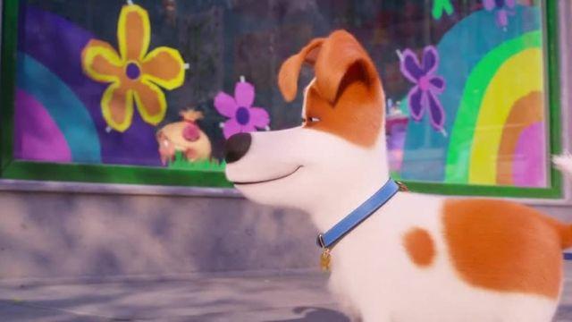 انیمیشن زندگی مخفی حیوانات خانگی 2 دوبله فا سی (The Secret Life Of Pets 2 (2019