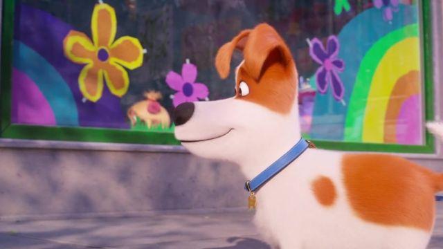انیمیشن حیوانات خانگی 2 2019 با دوبله فارسی